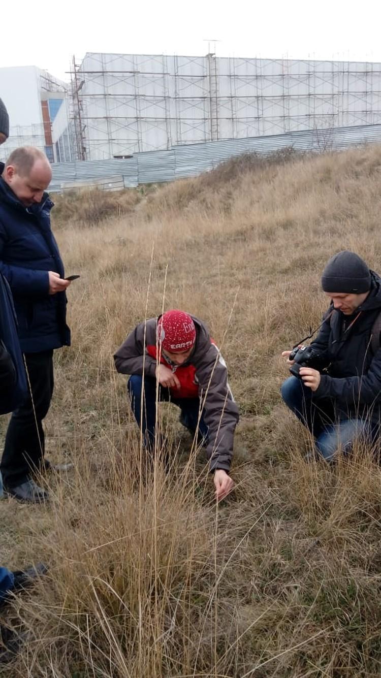 Экологи провели экспертизу и нашли краснокнижники ФОТО: Татьяна Трибрат