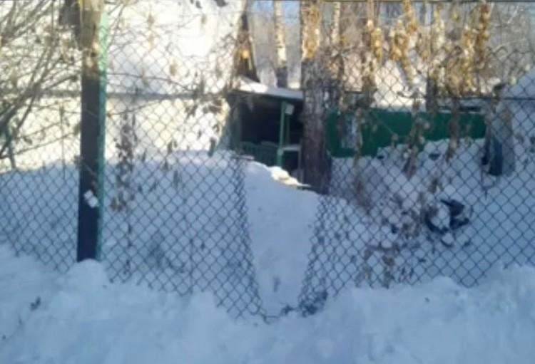 Та самая дырка в сетке-рабице, через которую вытащили пса. Фото: https://www.instagram.com/legalcompanyegorov/