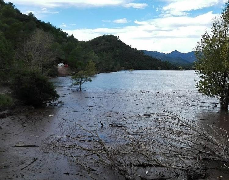 В этом болоте нашли тело. Фото: Elpunt avui.