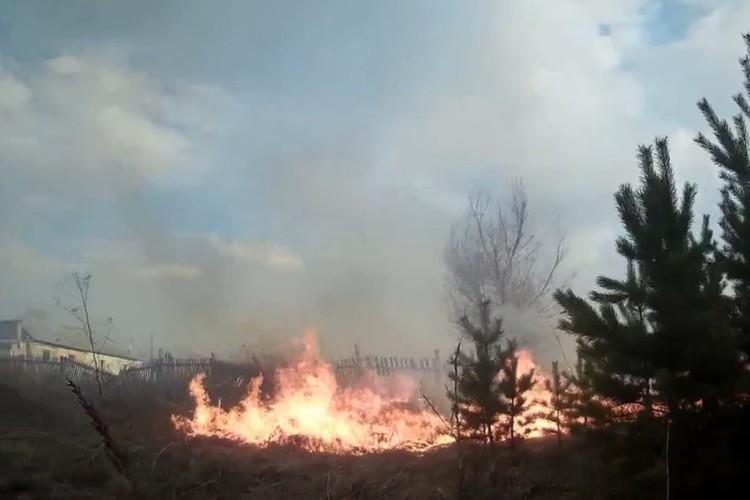 Огонь все ближе подбирается к домам... ФОТО: кадр видео Романа Жатова.