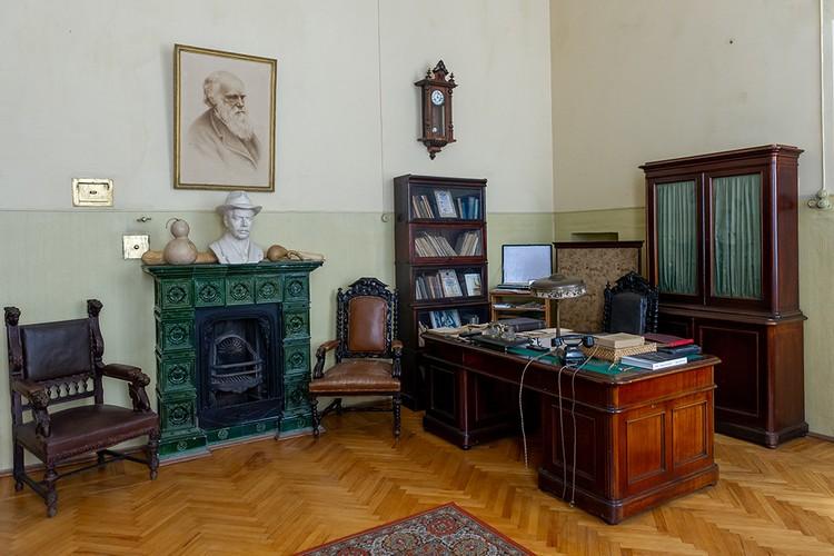 Николай Вавилов собирал свою коллекцию двадцать лет.