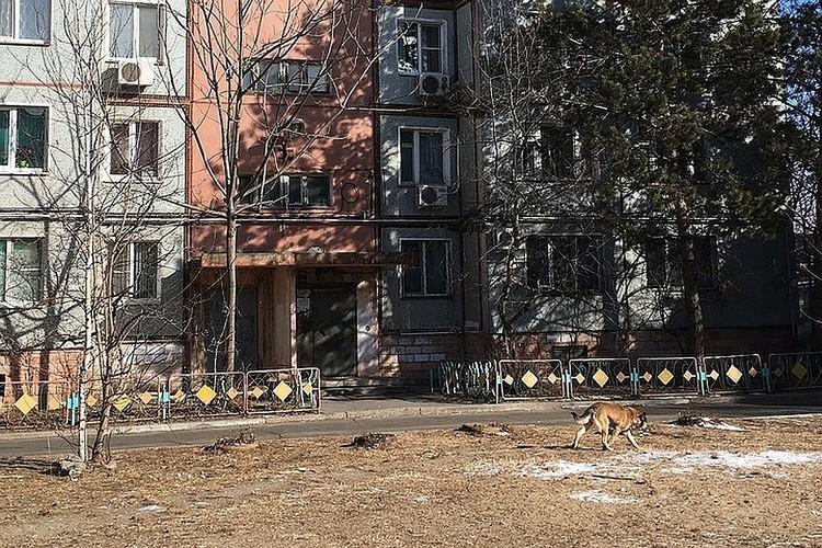 В Хабаровске передано в суд дело 80-летней серийной убийцы из Березовки