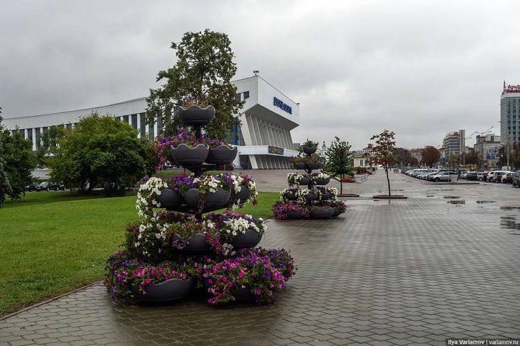 Вопросы у блогера и урбаниста вызвало и благоустройство города, например, обилие петуний в горшках вдоль проспектов Фото:varlamov.ru