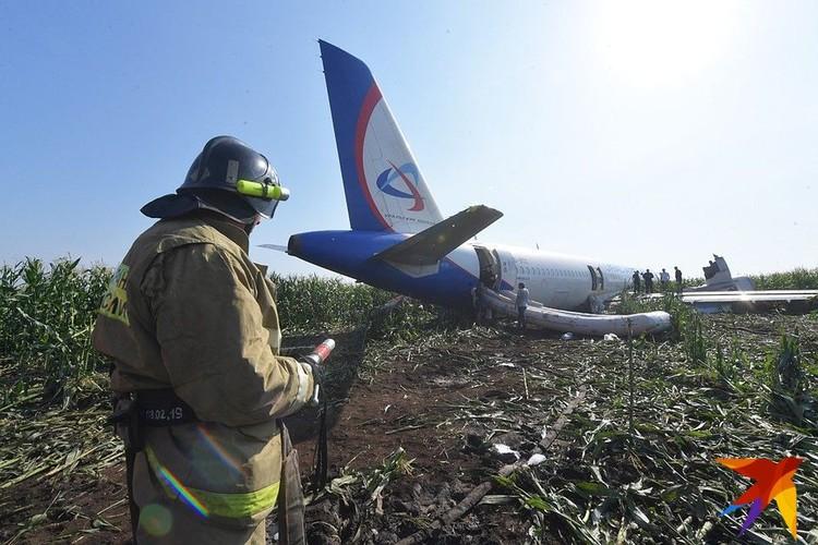 Самолет стал падать из-за стаи птиц, попавшей в двигатели.