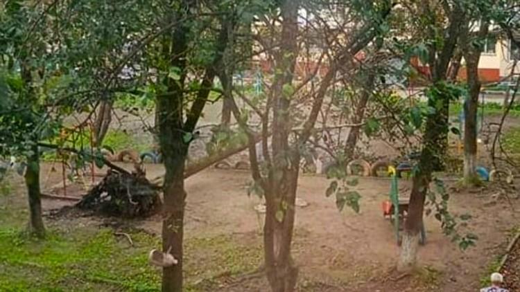 Вырвано с корнем. Детская площадка на Сахалинской.Фото: dpskontrol_125rus
