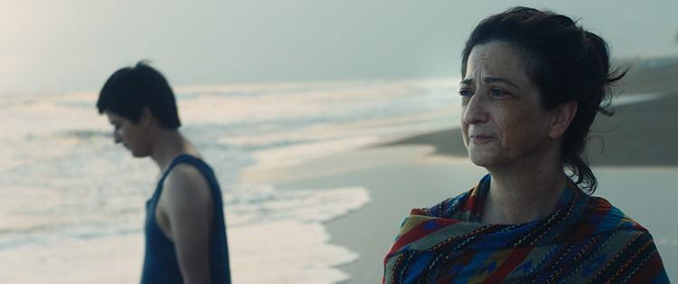 Фильм «Наши матери» был высоко оценен в Каннах и получил приз за лучший дебют.