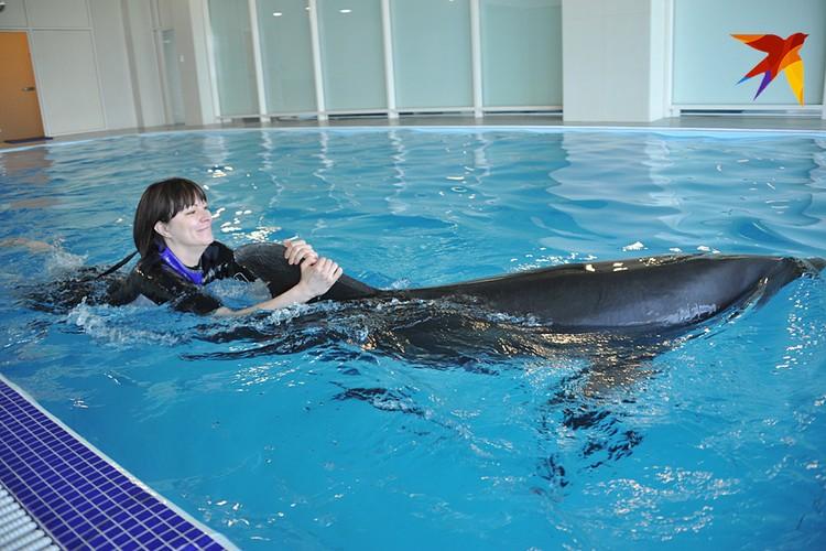 Сейчас с дельфинами можно плавать за солидную плату, 15 000 рублей в час. Надо думать, к 2082 году цены снизятся