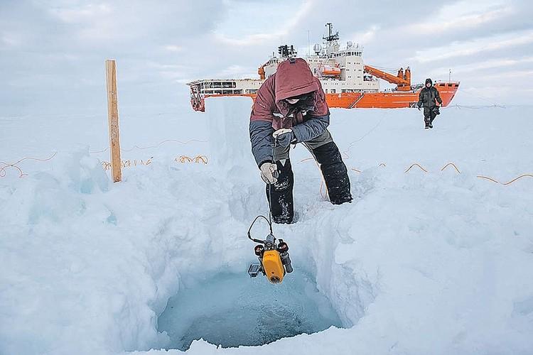 Изучение поведения и свойств арктического льда. Фото: Сергей Николаев/aari.ru