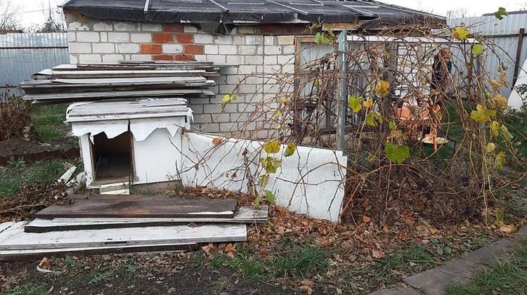 Председатель СНТ сфотографировал строение, в котором жила пожилая женщина
