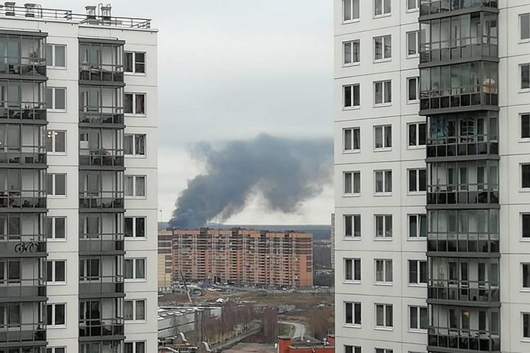 Жители Мурино наблюдают огромные столбы дыма из окон своих домов