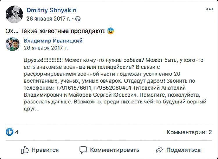 Иногда репосты фейковых сообщений делают и знаменитости. Среди тех, кто проникся историей про вымышленных служебных собак, оказался комментатор «Матч ТВ» Дмитрий Шнякин.