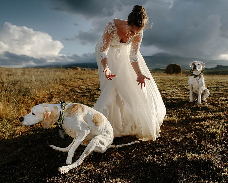 Фото: Oli Sansom \ International Wedding Photographer of the Year