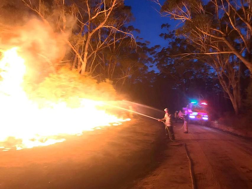 Лесные пожары пылают в 7 из 8 штатов страны Фото: REUTERS