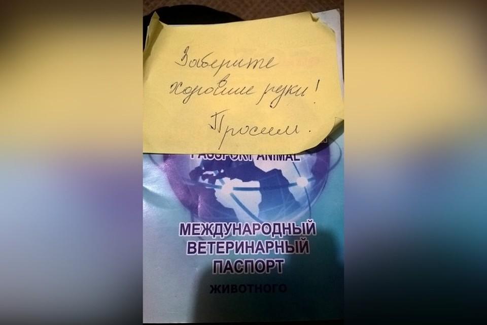 займы в новокузнецке по паспорту