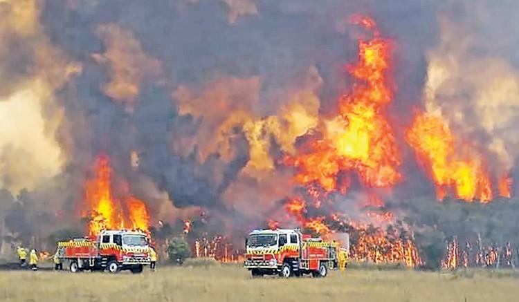 На восстановление пострадавших от пожаров районов и заповедников власти Австралии пообещали выделить почти полтора миллиарда долларов. В целом они охватили территорию, сравнимую с Австрией, - 8,5 млн гектаров. Фото: AP