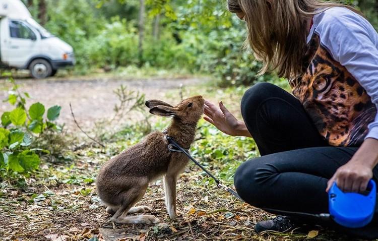 Кристина признается, что не мыслит жизни без своих зайцев