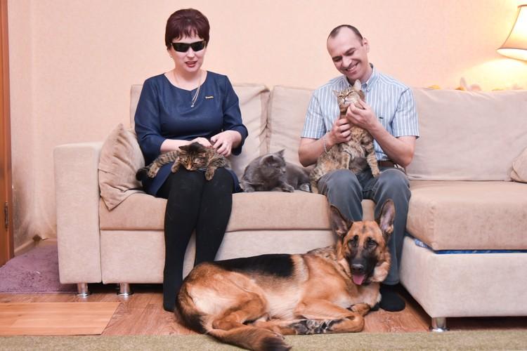 У Нади и Вовы живут собака и три кошки.
