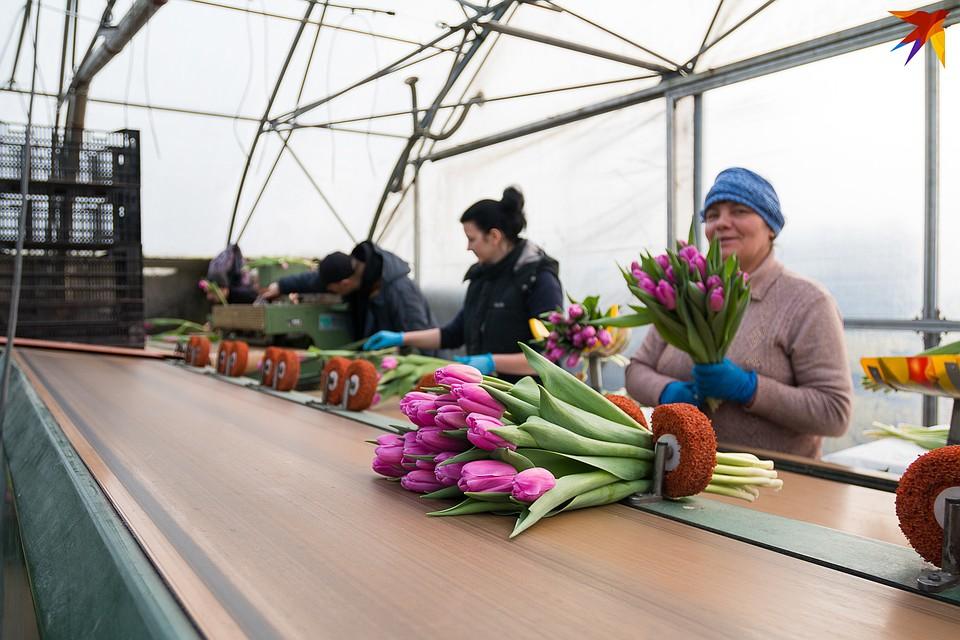 Женщины говорят, что с цветами работать не так-то просто - но всегда радостно. Фото: Надежда ПАВЛЮЧИК