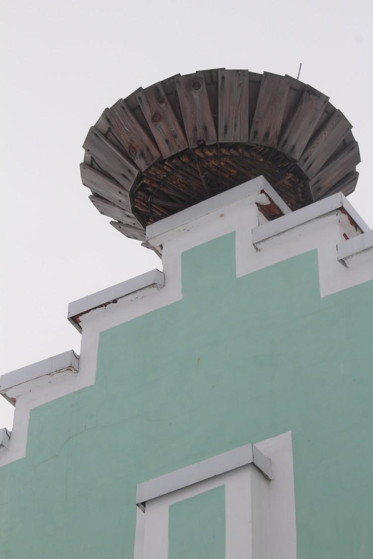 Первое гнездо было устроено максимально похожим на те, которые строят сами птицы.