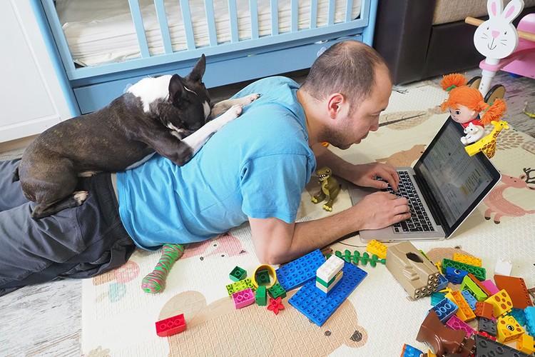 Животное не понимает: почему вы дома, но с ним не играете.