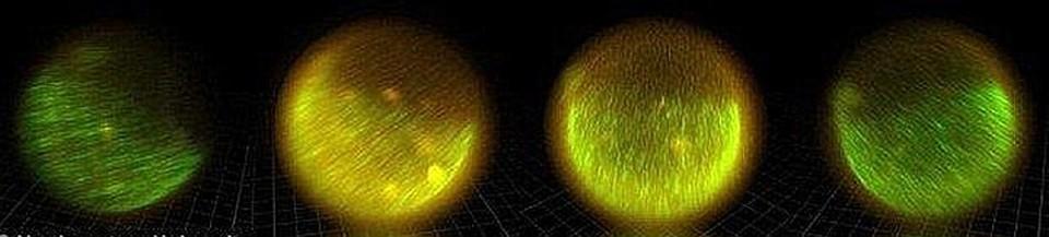 Свет в яцеклетке тоже вспыхивает волнами.