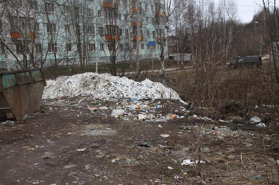 Под сошедшим снегом оказалось много мусора.