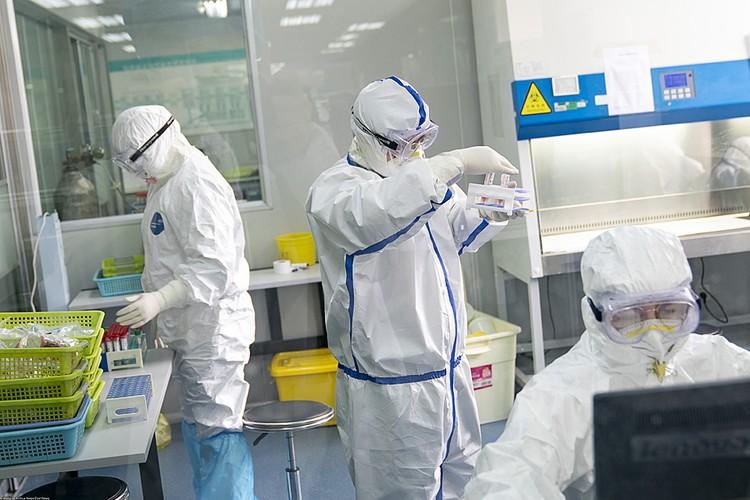 В последние годы сложился мало афишируемый, но активный китайско-американский альянс в области генной инженерии и синтетической биологии