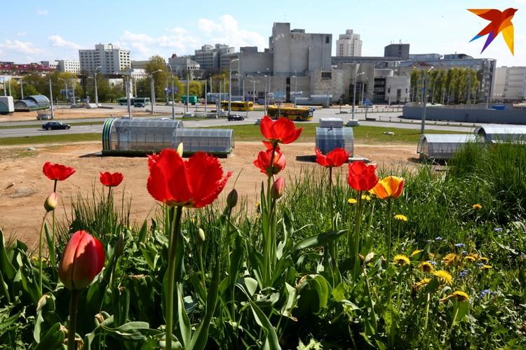 Так выглядит площадь Франтишка Богушевича сегодня.