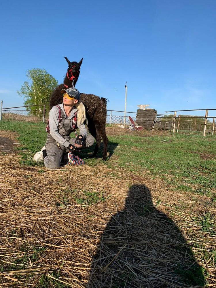 На ферме живут и другие животные. Фото: личный архив.