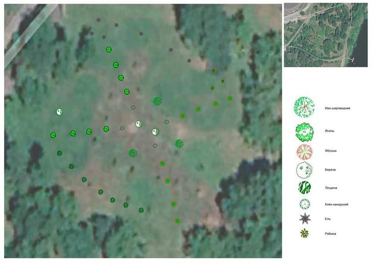 """Карта посадки новых деревьев. Фото: сообщество """"Парки и скверы"""""""