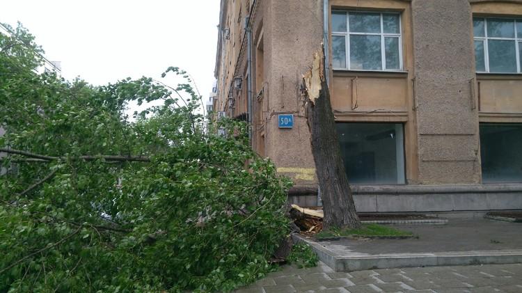 Разрушения в центре города. Фото: Алина Сурина