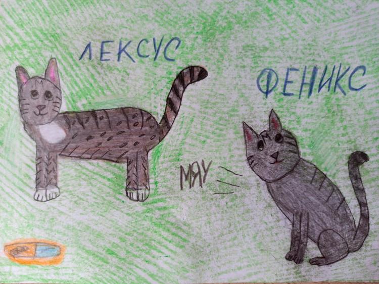 Коты Феникс и Лексус Ангелины Филипповой.