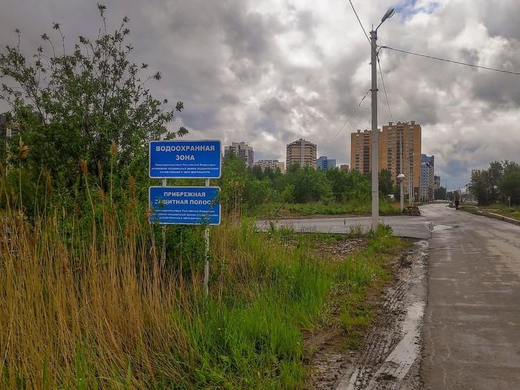 """По словам активистов, свалка находится в природоохранной зоне реки Красненькая и Финского залива. Фото: сообщество """"Красивый Петербург"""""""