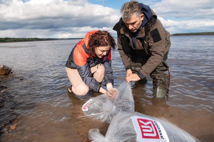 ЛУКОЙЛ-Коми проводит ежегодные акции по выпуску молоди ценных промысловых пород рыб с 2007 года