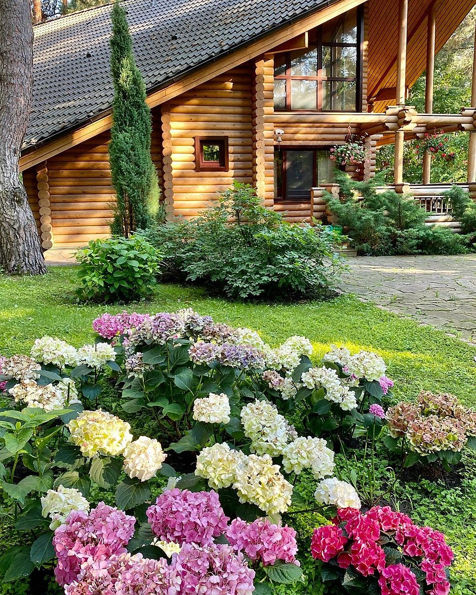 Деревянный домик для гостей. Фото: Instagram.com