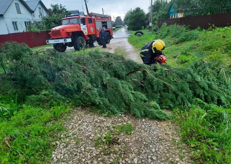 Спасатели устраняют последствия стихии. Фото: Дмитрий Абаренов