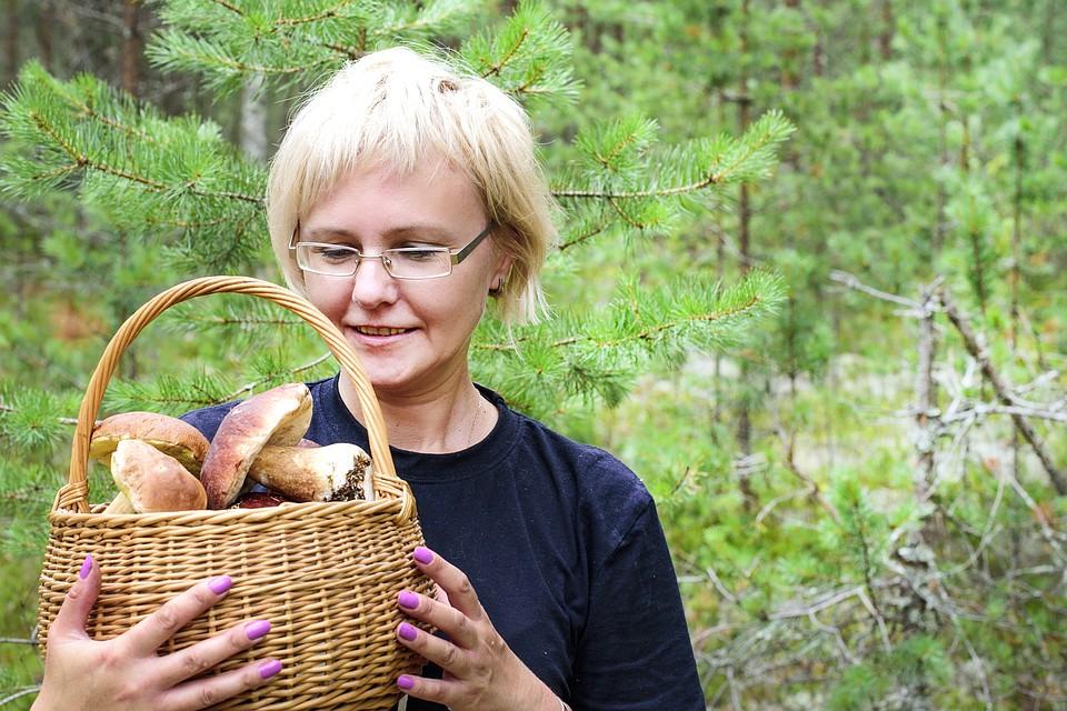Триптофаном богаты индейка, молочные продукты, грибы (особенно вешенки), семена тыквы, чиа, подсолнечника. Фото: Shutterstock