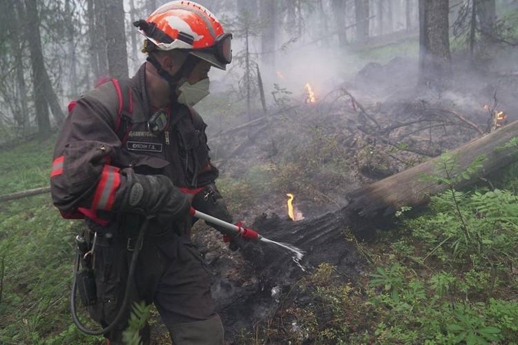 Тушить огонь в заповеднике можно только вручную, либо с воздуха - пожарная техника здесь не пройдет. Фото: пресс-служба заповедника «Денежкин Камень»