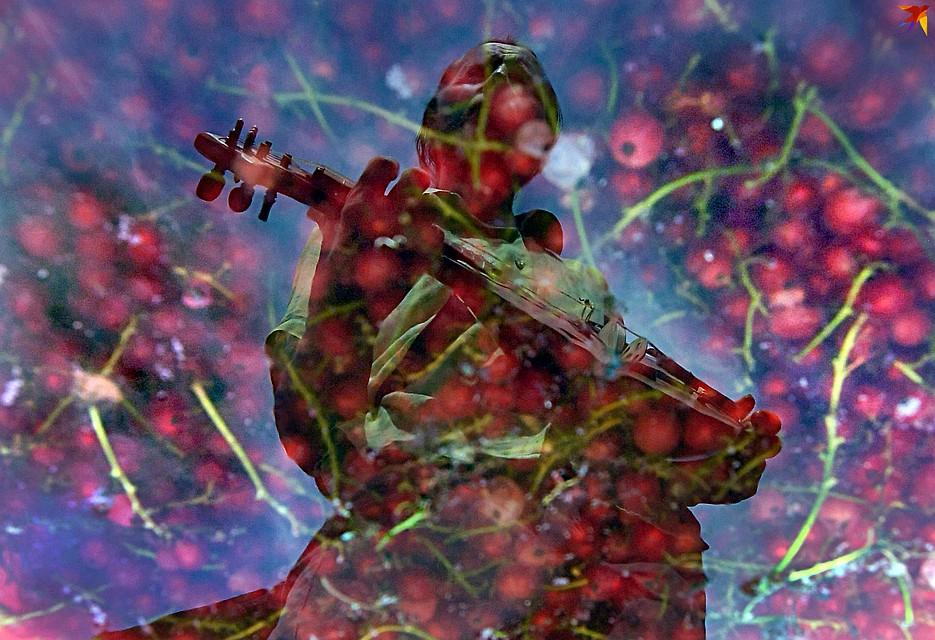Андрей Шклёда рад вернуться на родину: все лето провел в огороде и в мастерской. Фото: Виктор ДРАЧЕВ