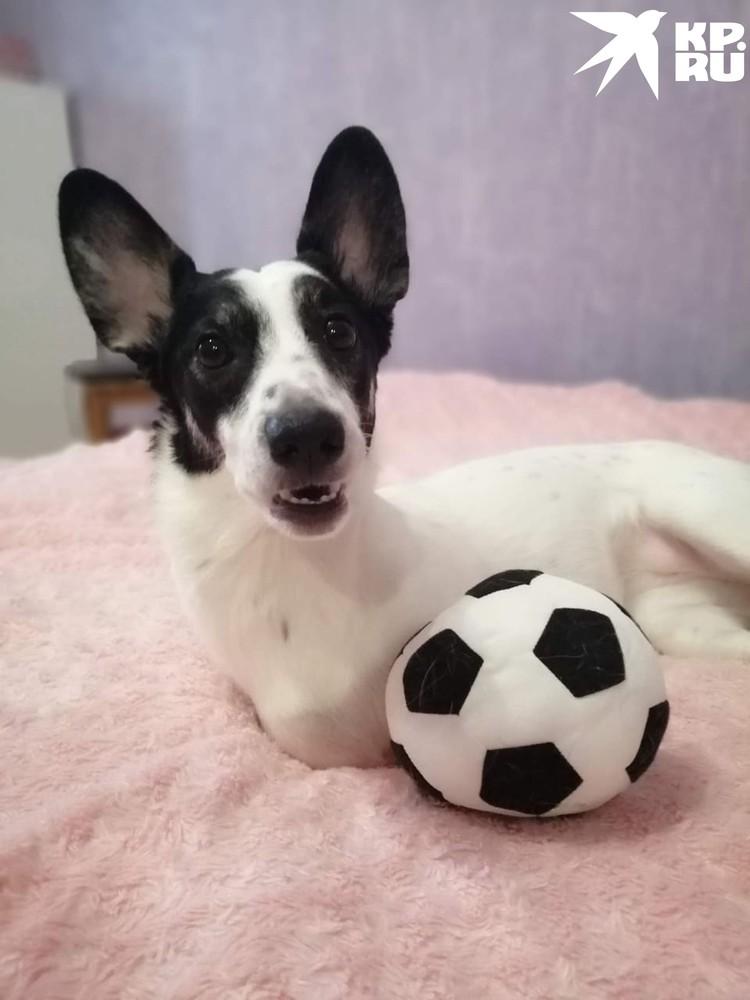 - Поиграем в футбол? Фото: Ирина АНИКИНА