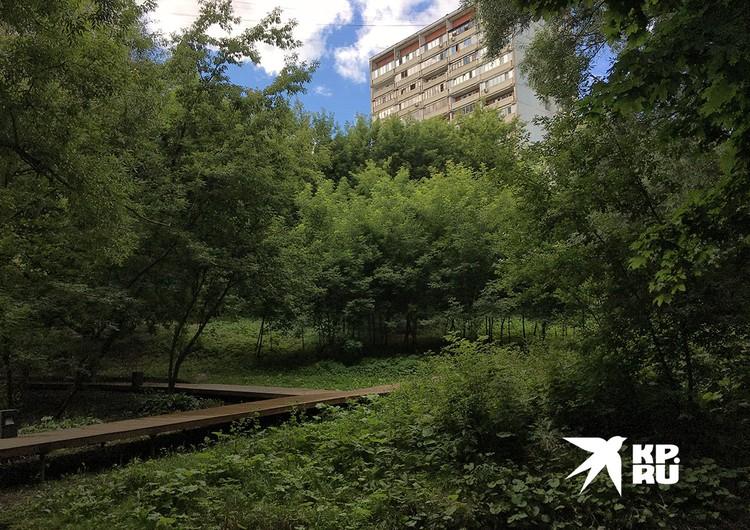 Долина реки Очаковки оказалась между многоэтажными домами, чему их жители очень рады.