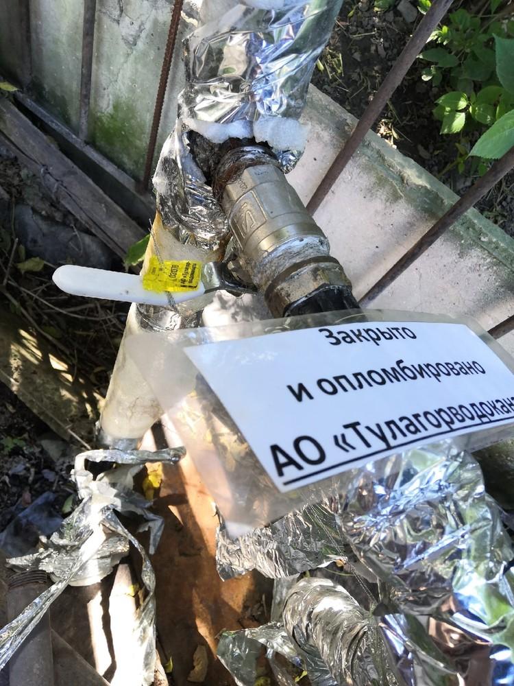 Фото: «ЛЮБИМЕЦ» Центр помощи бездомным животным в Туле