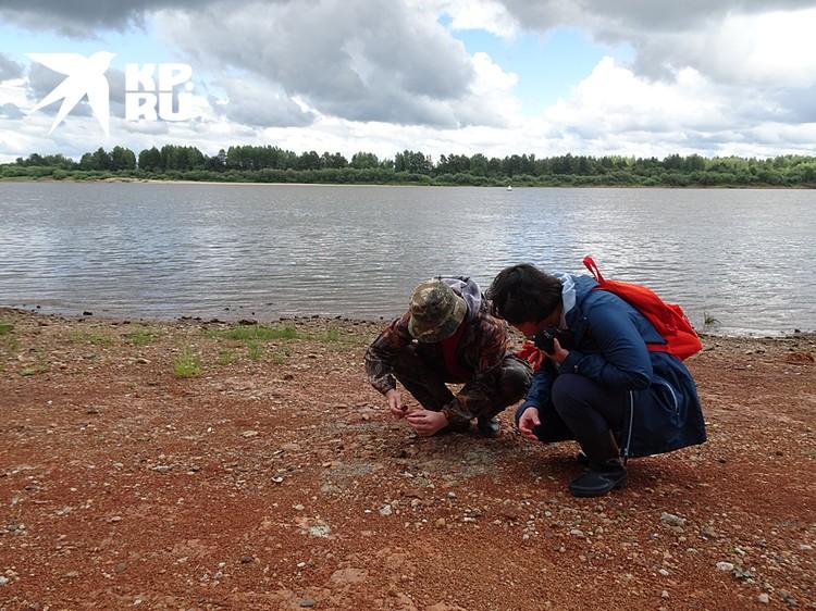 Так работают палеонтологи. Вместе с Леонидом Кавардаковым мы ищем древние кости