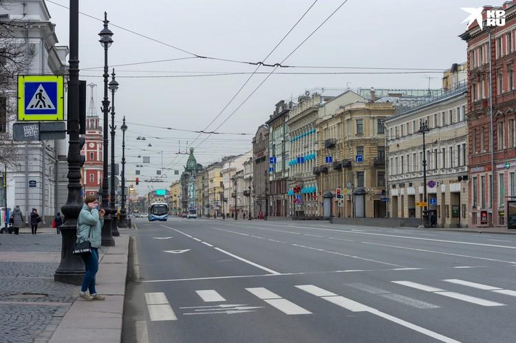 """Если поднять голову вверх во время прогулки по Невскому, увидишь целую """"паутину""""."""
