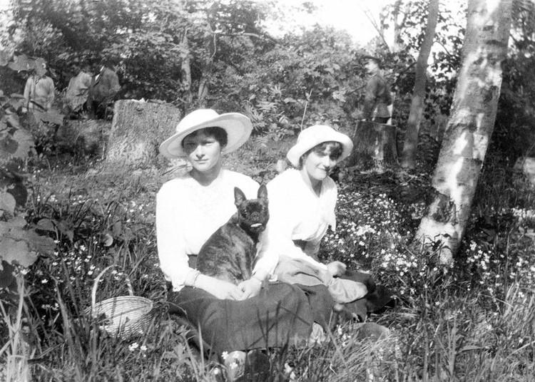 Сучку французского бульдога Ортипо Татьяне Николаевне подарили осенью 1914. Фото: Государственный архив РФ