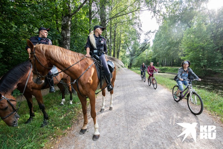 Многие спрашивают, почему сотрудников не пересадят на велосипеды? Ответ прост: конь — настоящий вездеход по сравнению с двухолесным.