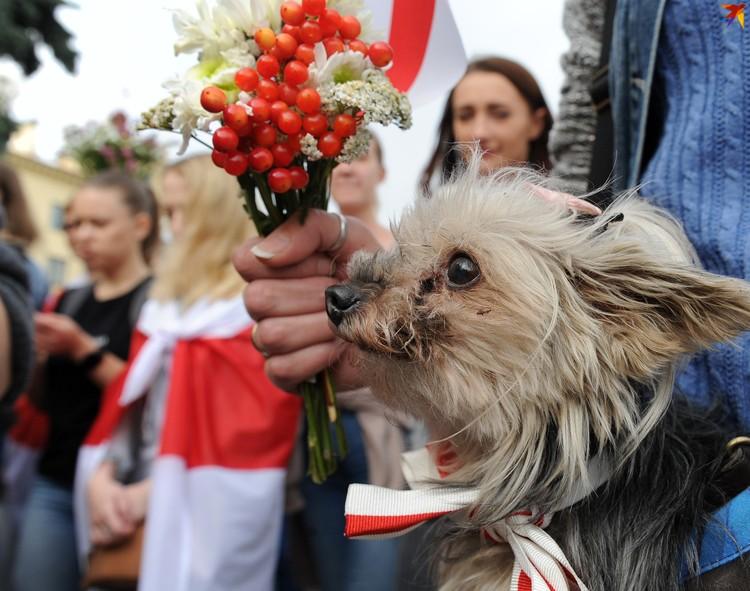 В руках участницы марша заметили собачку