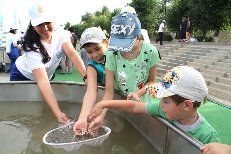 В Атырауской области имеются 3 водоема для профессиональной рыбалки.