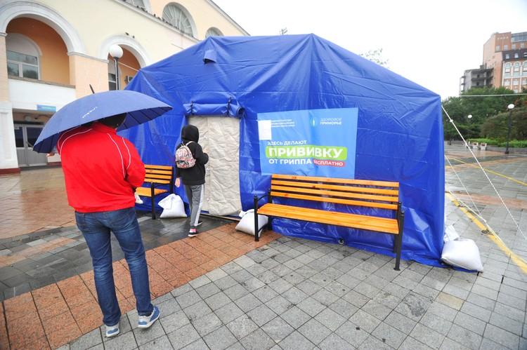 Во Владивостоке развернули семь специализированных прививочных пунктов для удобства горожан