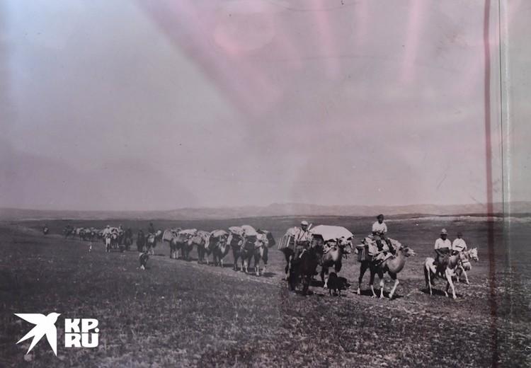 Караван П.К. Козлова во время Монголо-Тибетской экспедиции 1923-1926 г.г. Фото: Кяхтинский краеведческий музей/Репродукция